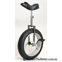 Unicycle 20 Monster